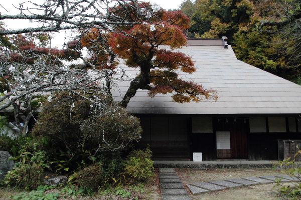 惣河内神社・百日桜 121121 021