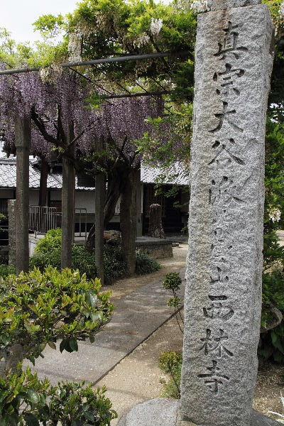 西岡西林寺 130502 01