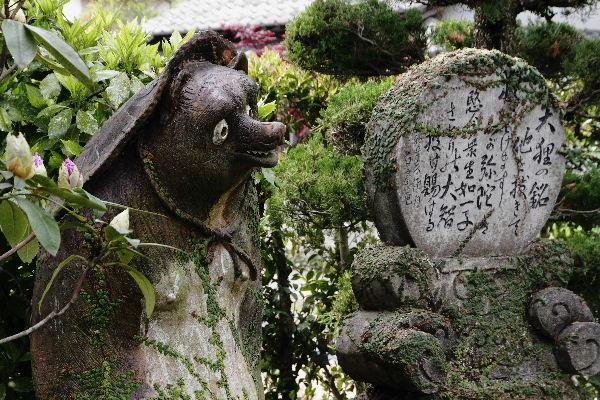 西岡西林寺 130502 05