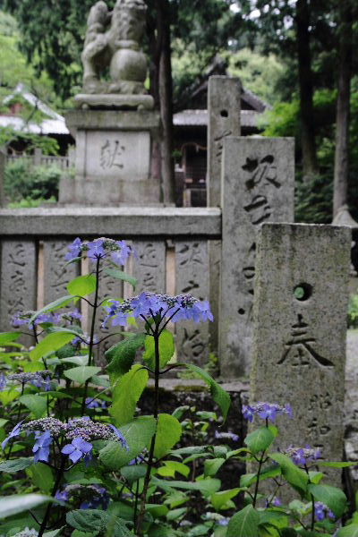 惣河内神社 黒姫 130530 02