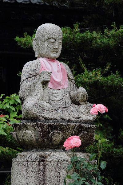 浄土寺 130609 05