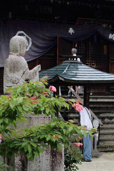 浄土寺 130609 06