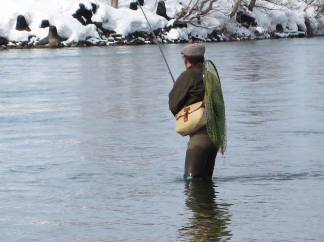 鯛釣り名人