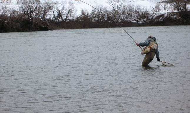 鯛釣り名人のふぁいっとーぉー
