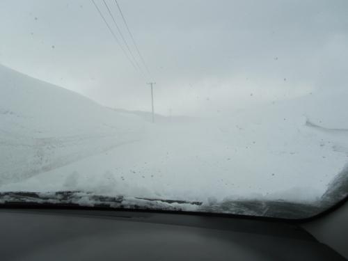 地吹雪の道