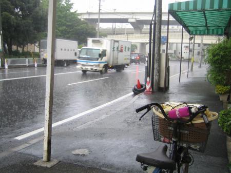 雨のニオイニャ