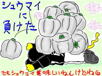 snap_torapu_201346214644.jpg