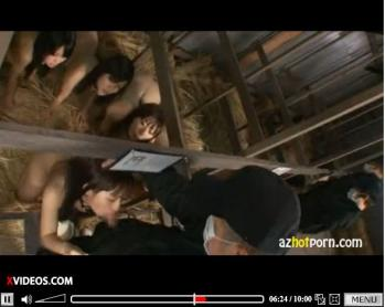 AzHotPorn.com - Human Animal Farm Super Stars - XVIDEOS.COM