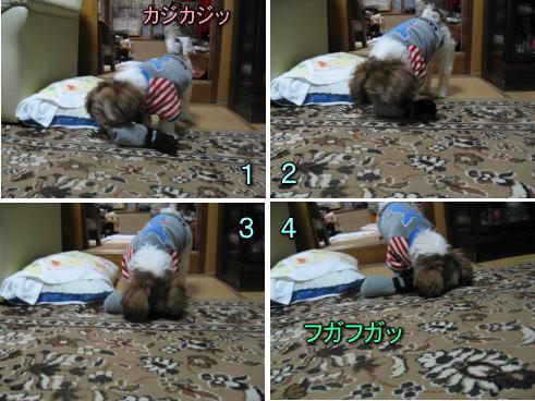 10・2・9実家9