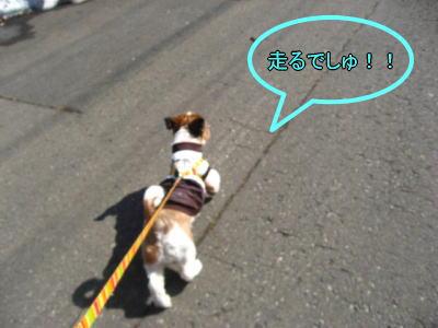 4・2散歩2