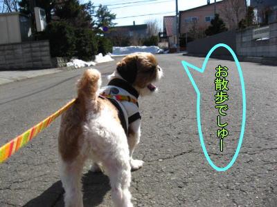 4・2散歩