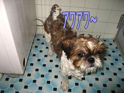 お風呂の日2