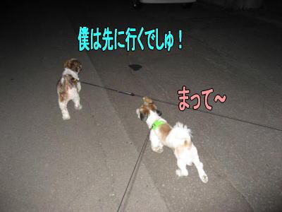 みんなでお散歩2