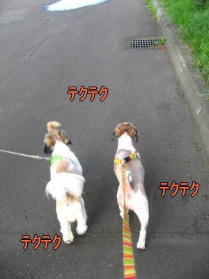 久しぶりの公園3