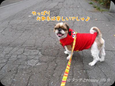 掃除&お散歩5