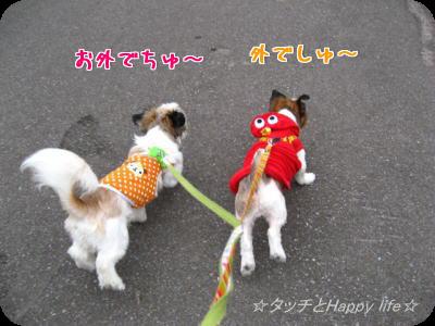 掃除&お散歩3
