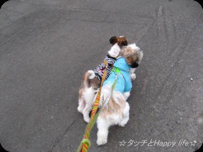 楽しいお散歩4