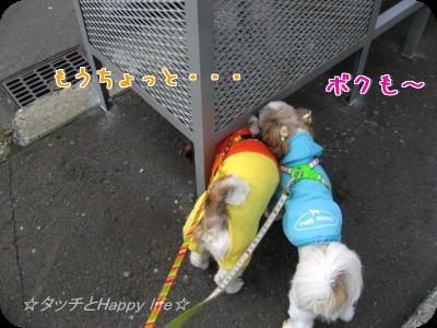 お散歩&公園2