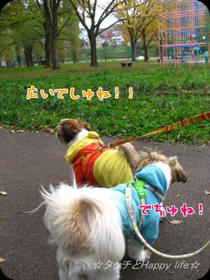 お散歩&公園7