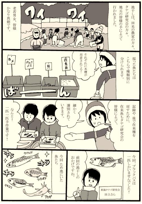 ikehoshimanga_3.png