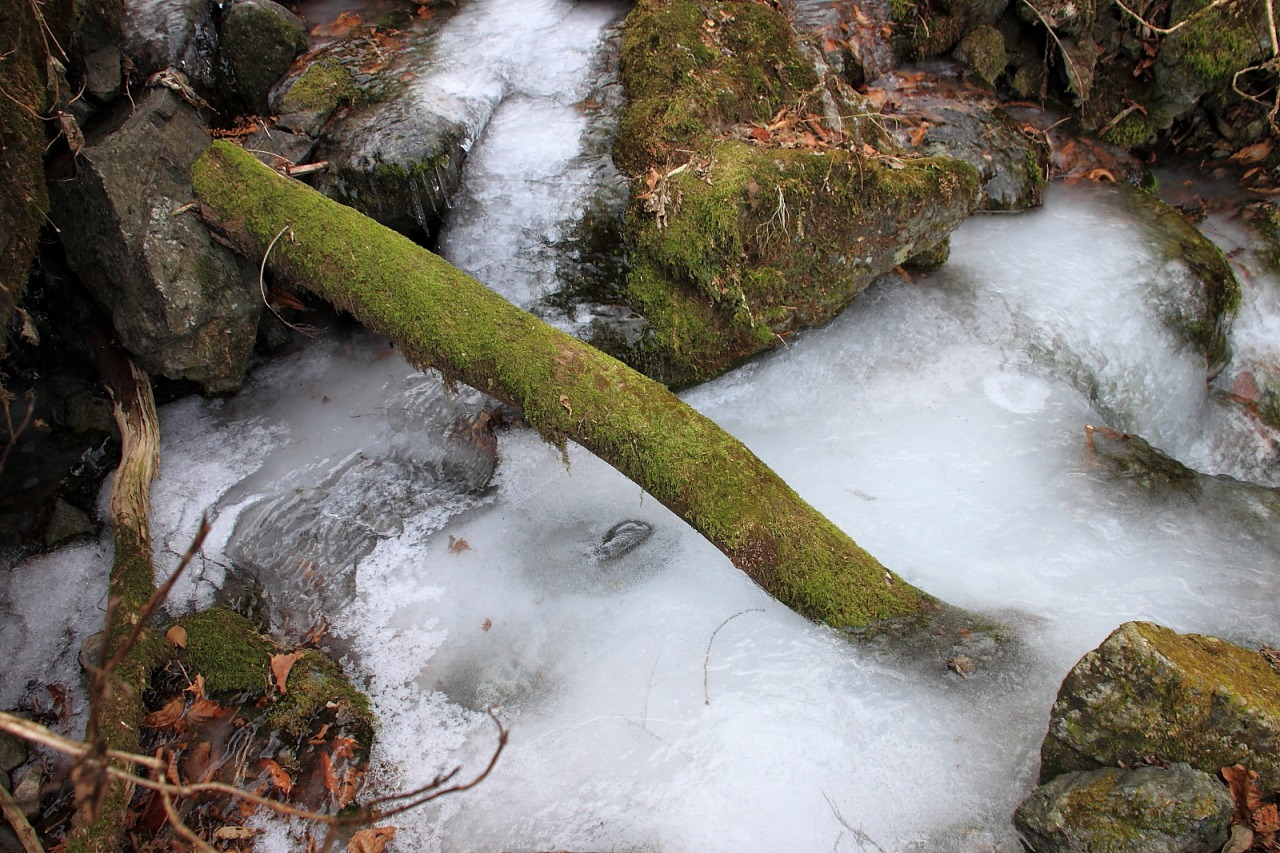 2013年1月13日 13氷瀑_012