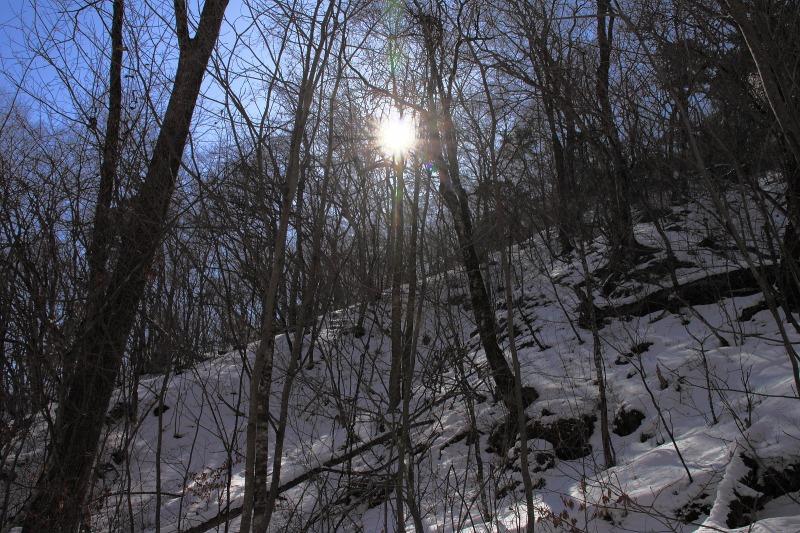 2013年2月23日 三頭山_017