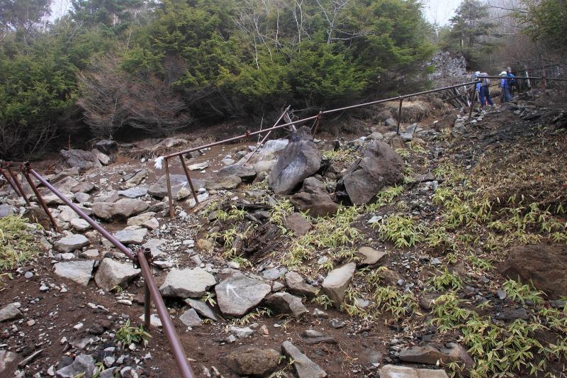 2013年5月12日 男体山_009