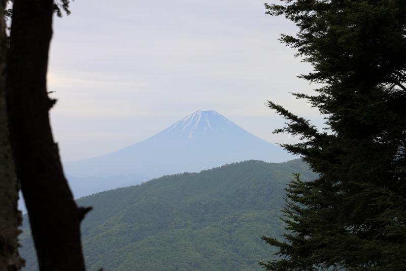 2013年6月1日 鳳凰三山_065