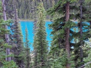 偶然見つけた湖