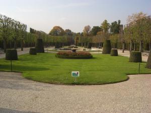 シェーンブルン宮殿の庭