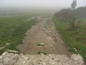 スピシュ城への道