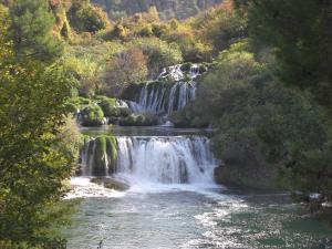 公園内の滝