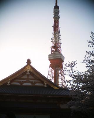 東京タワーと安国殿:R2