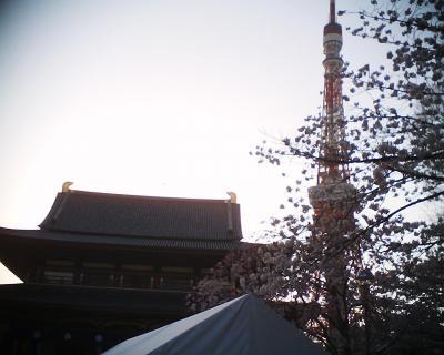 東京タワーと増上寺大殿と桜:R2