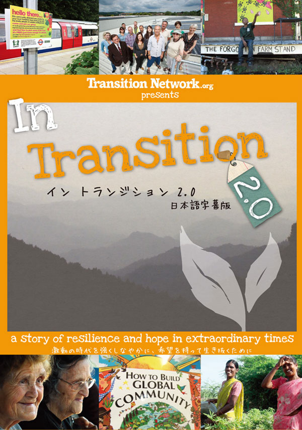 InTransition2dvd.jpg