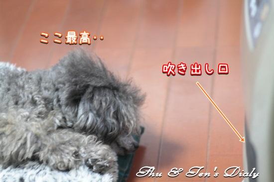 006IMG_6758.jpg