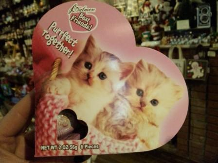 猫チョコ1