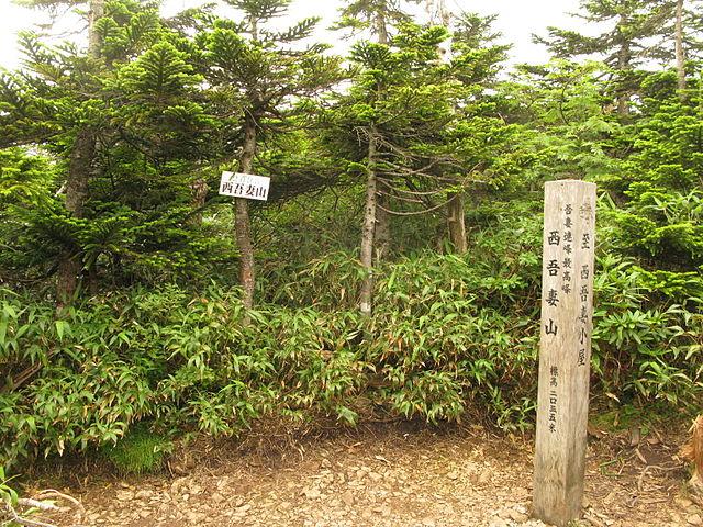 MtNishiazuma-yama3.jpg