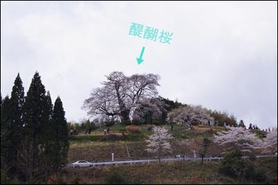 DSC01709a.jpg