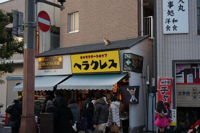 dazaifucat001.jpg