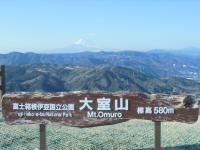 大室山 580mの崖みたいなもん