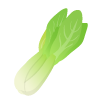ブログ素材(チンゲン菜)