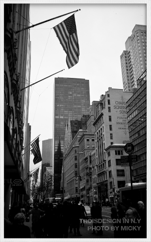 NY_0030.jpg