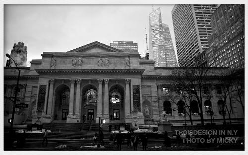 NY_0031.jpg