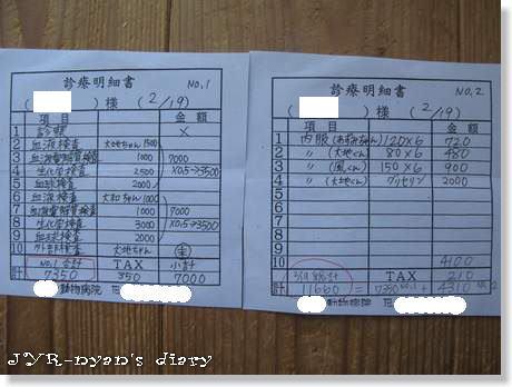 busshi130219_4