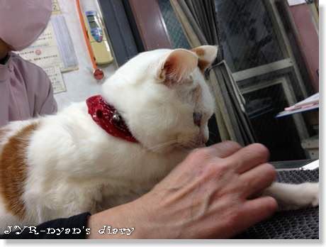 daichi130222_2