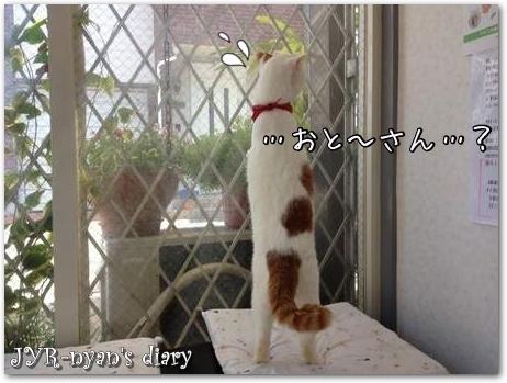 daichi130429_4
