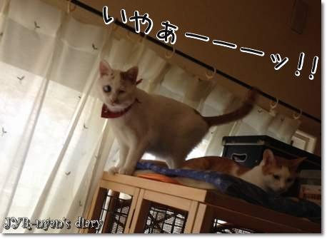 daichi130608_2