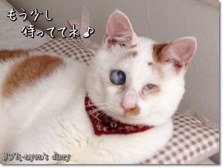daichi130614