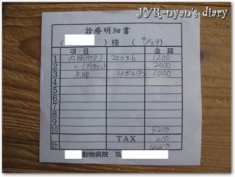 iryohi130429